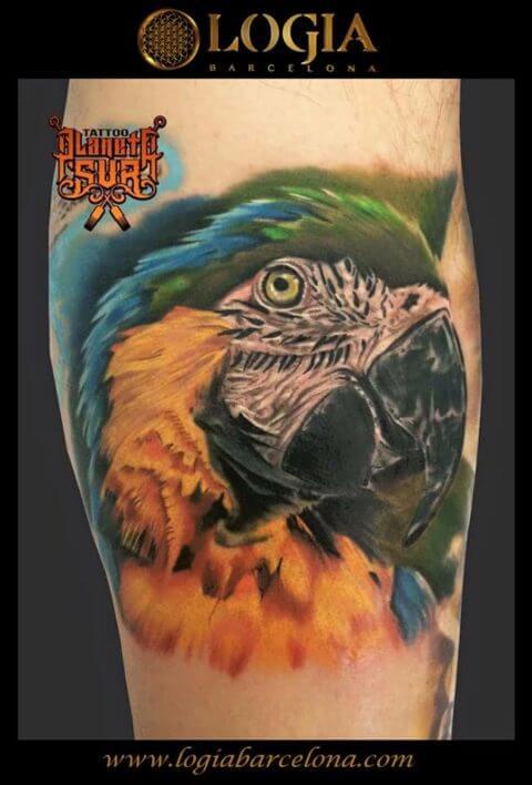 tatuaje de loro, tatuajes de loros