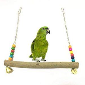 accesorios y productos para loros, comprar accesorios para loros