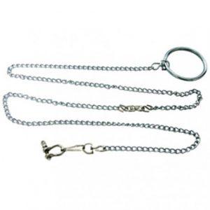 comprar cadenas para loros