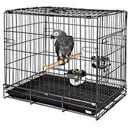 jaulas para loros, jaula para loros, jaula para loro, cotorra, cotorro, cacatua