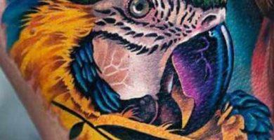 tatuajes de loros, tattoo loro, tatuaje loro, tatuaje de loro