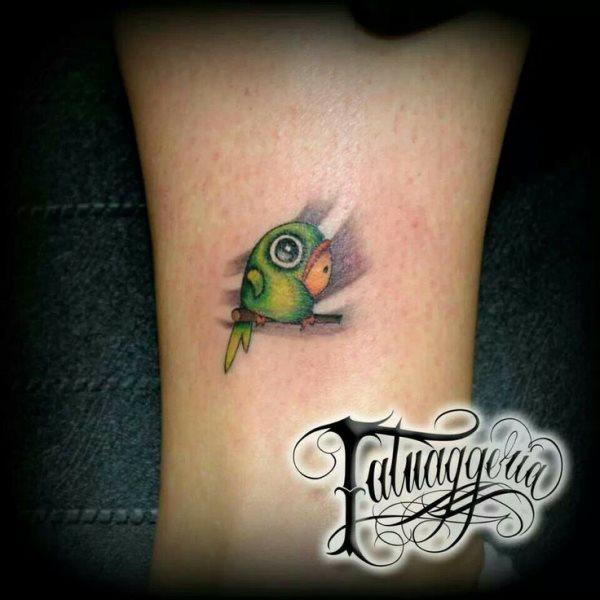 loros tatuados agapoornis