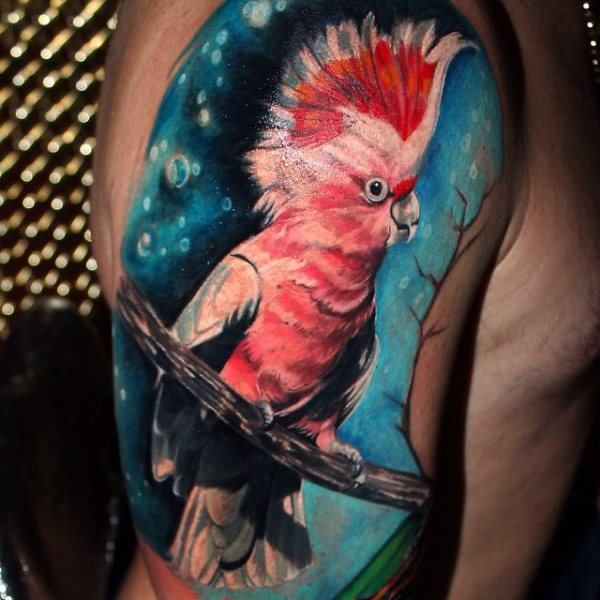 tatuajes cacatuas ninfas loros