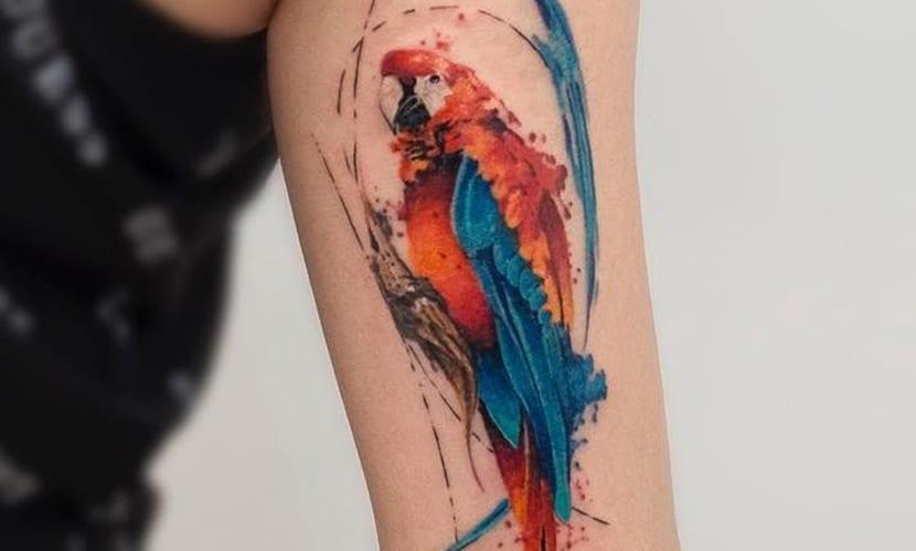 tatuaje de loro, loro tatuado, loros tatuados