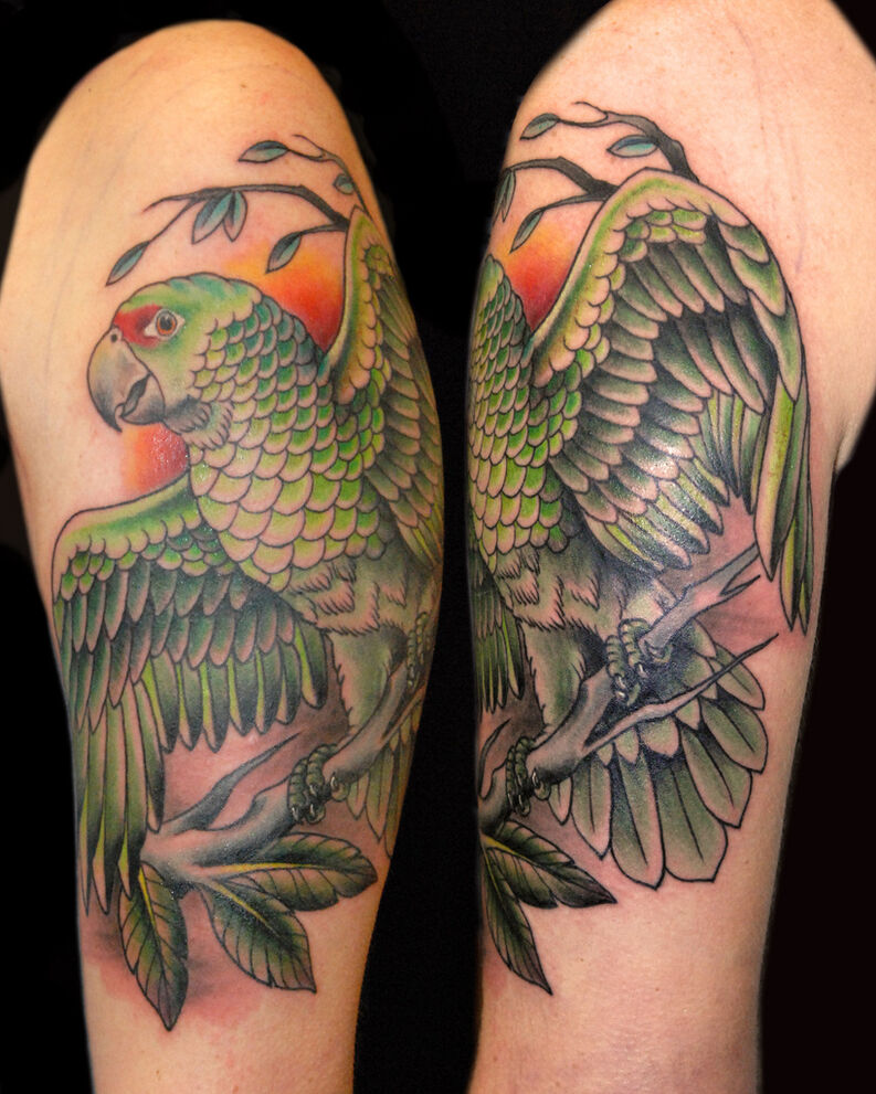 tatuaje de loro, loros tatuaje, tatuaje de loros