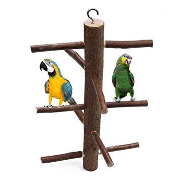 perchas de madera para loros perchas para loros grandes perchas de pie para loros perchas java para loros como hacer perchas para loros