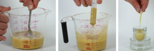 preparacion de alimentos para loros bebes