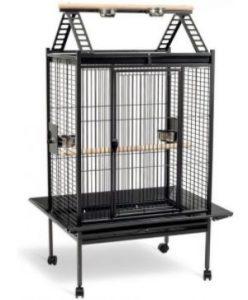 consejos y recomendaciones para elegir una jaula para loro yaco, jaulas para yacos