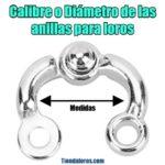 medidas diámetros y calibres de las anillas para cada especie de loros